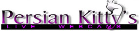 Persian Kitty Live Web Cams Logo