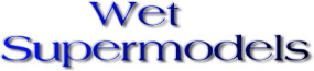 Wet Supermodels Logo