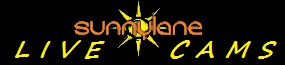 Sunny Lane's Cam Girls! Logo