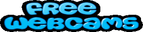 Nude Webcam Babes Logo