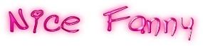 Nice Fanny Logo