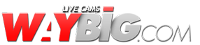 Live Cams at Waybig.com Logo